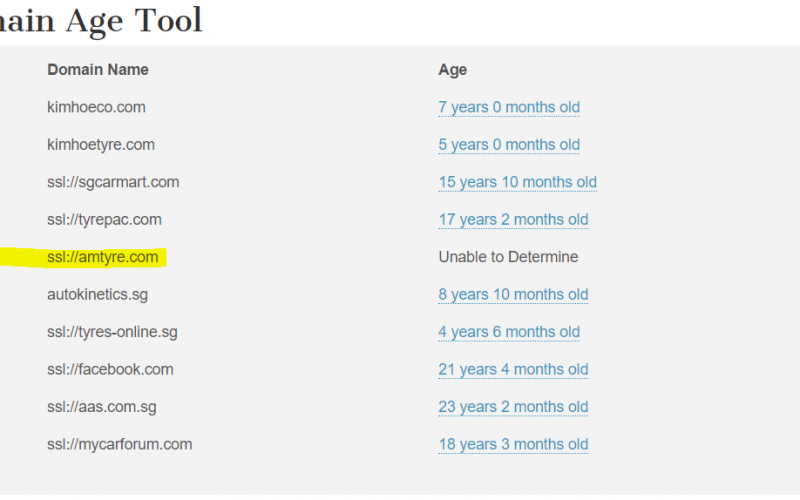 domain age on 1st page of google